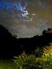 Moon over backyard (handheld Nightscene with Canon S100)