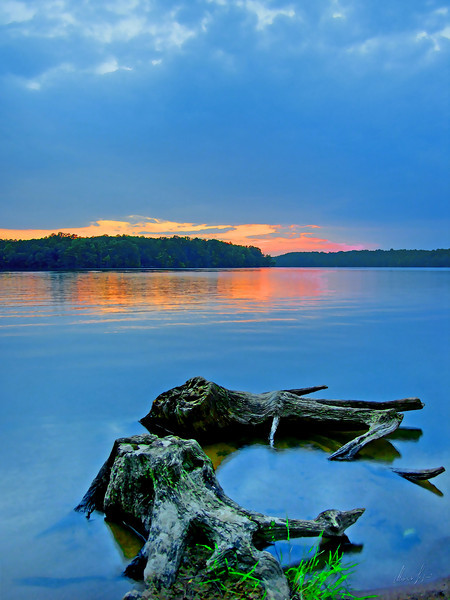 Lake Brandt sunset stumps