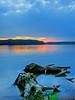 Lake Brandt sunset stumps