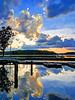 Lake Brandt marina