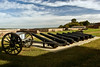 FORT WASHINGTON CANONS (LINED UP FOR REPAIR)