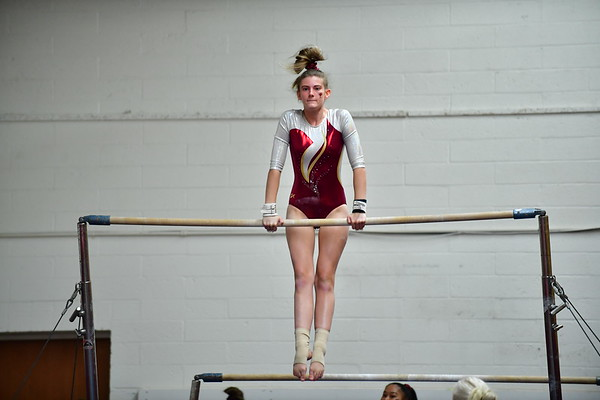 TP Gymnastics 2018