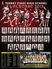 girls lax poster 2013 18 x 24 v10