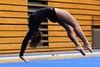 TP Gymnastics 2013 : 17 galleries with 4257 photos