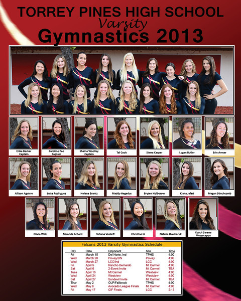 gymnastics 16x20 poster 2013 v4