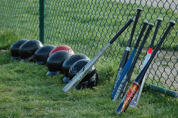 Grade School Baseball - 2010