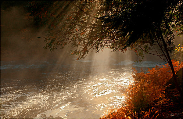 "Print Title : "" MORNING RAYS "" * File #7536"