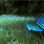 "Print title : "" BLUE BENCH "" File P78"