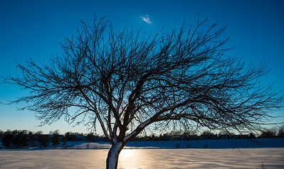 STANDING AGAINST THE FROZEN BEAUTY OF HOLMES LAKE