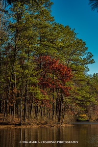 Stone Mountain Lake Colors