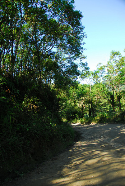 ON THE ROAD TO PARATY - July 5, 2007