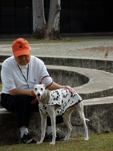Dad and Windy  (Disguised as a dalmatian)