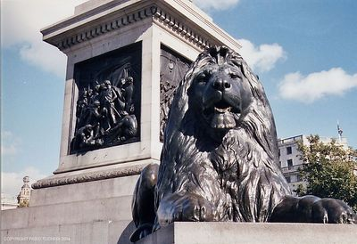 Lion at Piccadilly
