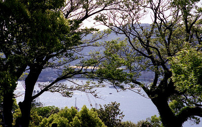 The trees camouflage the unscenic shipyards across the bay.