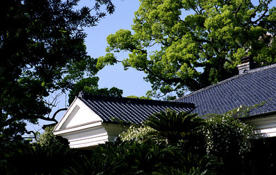 A roof from a more conventional angle.