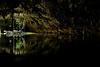 Circle of Life - As Above, So below - Mayan Cenote of the Yucatan