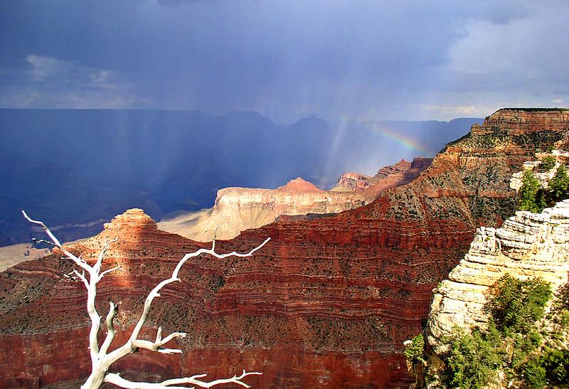 A RAINBOW THROUGH THE STORM