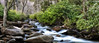 Mountain Stream - Great Smoky Mountains National Park - Tennessee