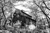 Greer Spring Mill - Mark Twain National Forest - Missouri