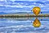 Nature Reflecting Art - Pagosa Springs, Colorado