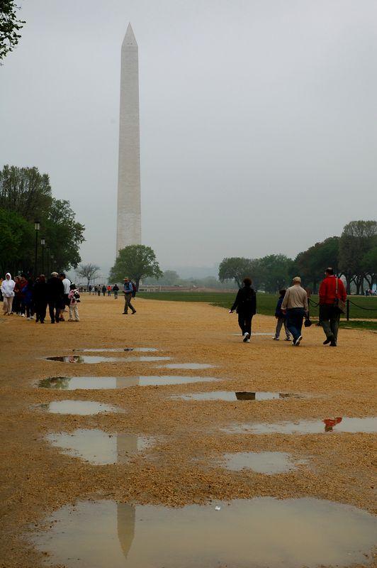 Washington Monument after rain