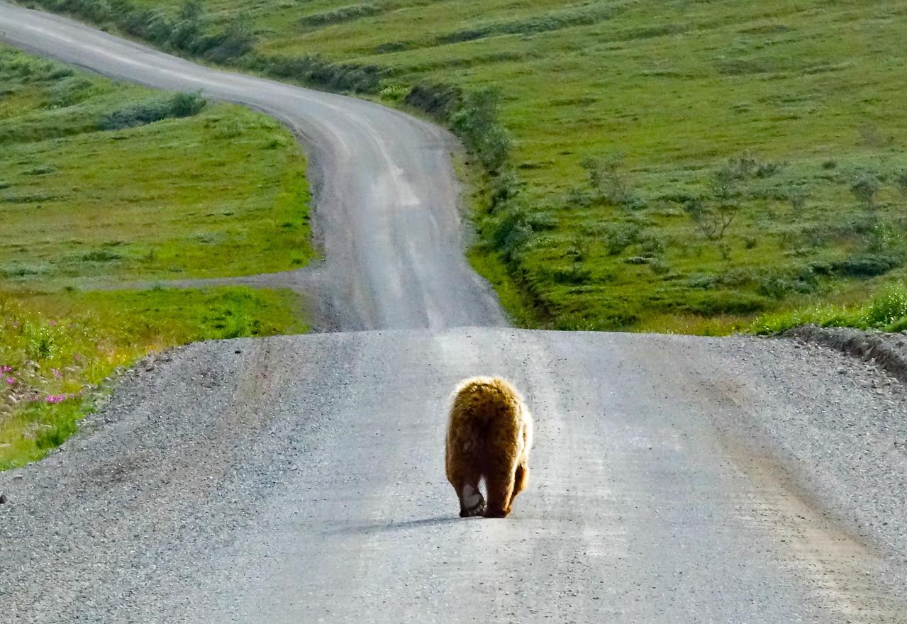 Headin'  Home