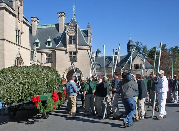 BILTMORE CHRISTMAS TREE RISING