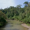 Segama River - Danum Valley