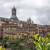 014 - Bascilica in Siena