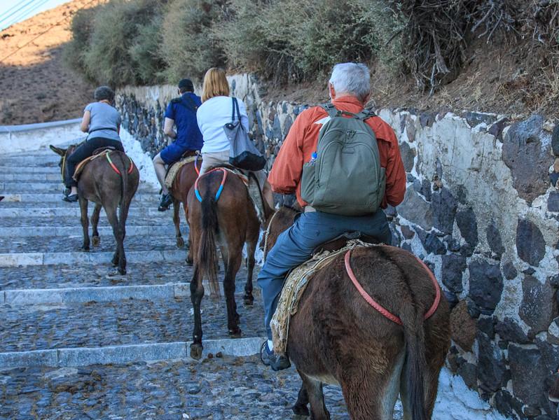 098 - Bob on donkey going up