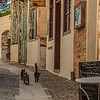 093 - Street with cats  in hillside village on Syros