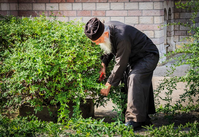076 - Greek Orthoox Priest trimming shrubs by Church