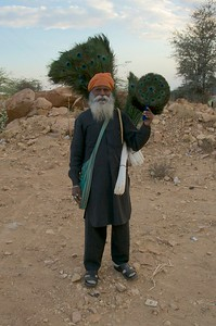 Kalicharan Singh, registered Peacock feather Seller