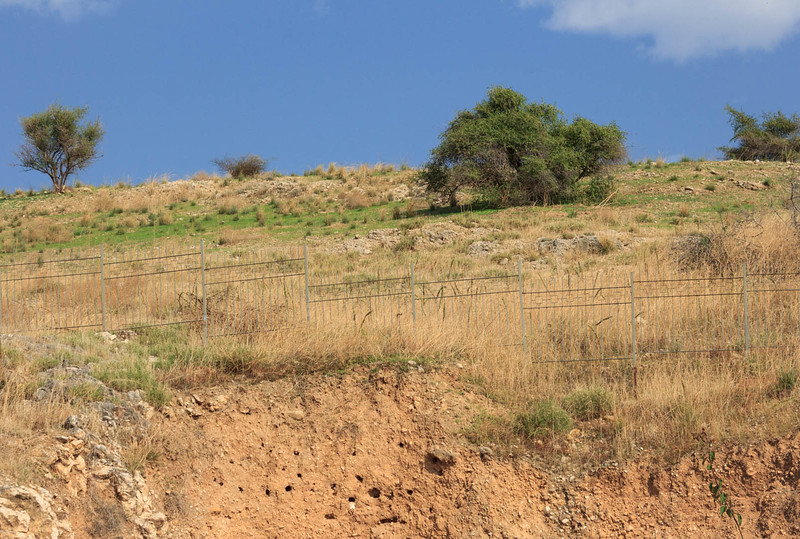 072 - Mount of the Beatitudes where Jesus preached the Sermon on the Mount