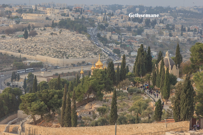 123 - Garden of Gethsemene - two churches - one with the gold steeples is the Cathedral of Mary Magdalene