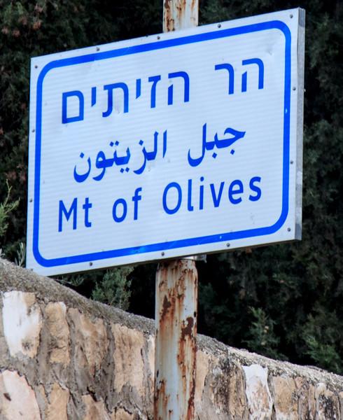 122 - Mt of Olives and Gethsemene