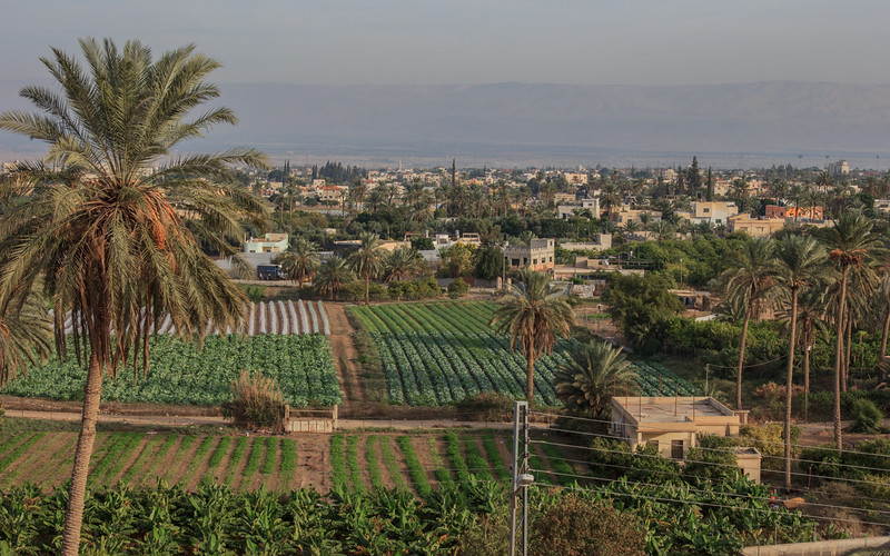 080 - Jericho - a very lush area with great fields of bananas, dates, figs and many other plantings