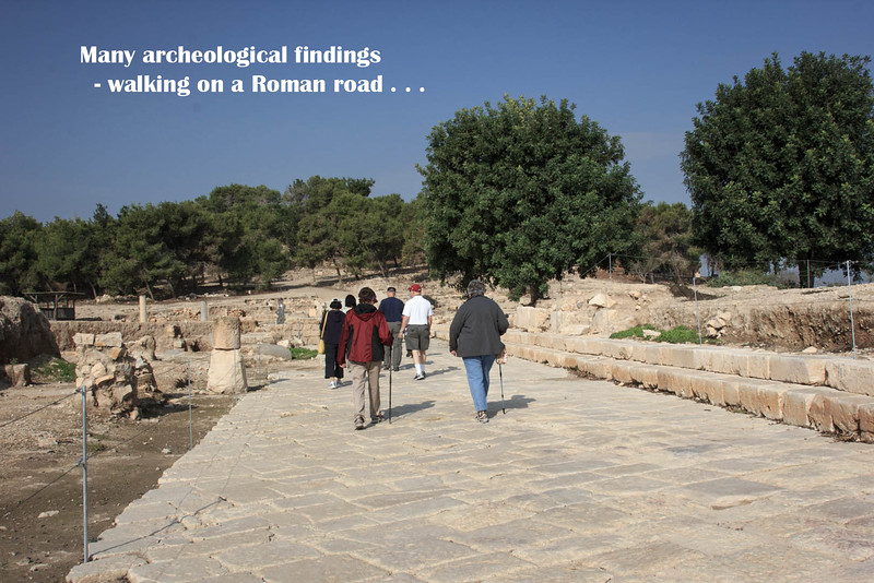145 - Zippori - walking on Roman Road