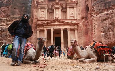 Camels at Al Khazneh
