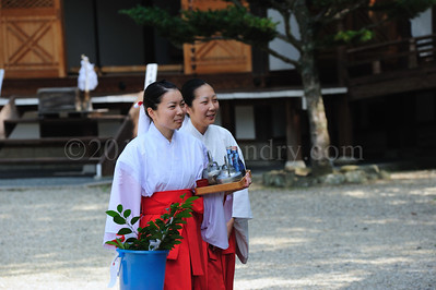 Lost in Translation, Awaji Shima, Japan - ©Rawlandry