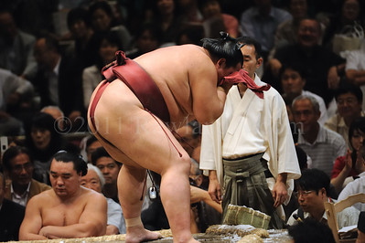 Lost in Translation ...Sumo... Japan - ©Rawlandry