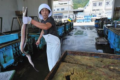 Lost in Translation, Awaji Shima - Fukura - Fishermen - Japan - ©2009 | Rawlandry