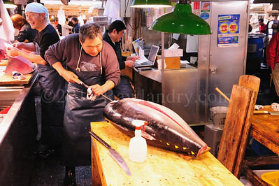 Lost in Translation, Tsukiji Fish Market, Japan - ©2009 | Rawlandry
