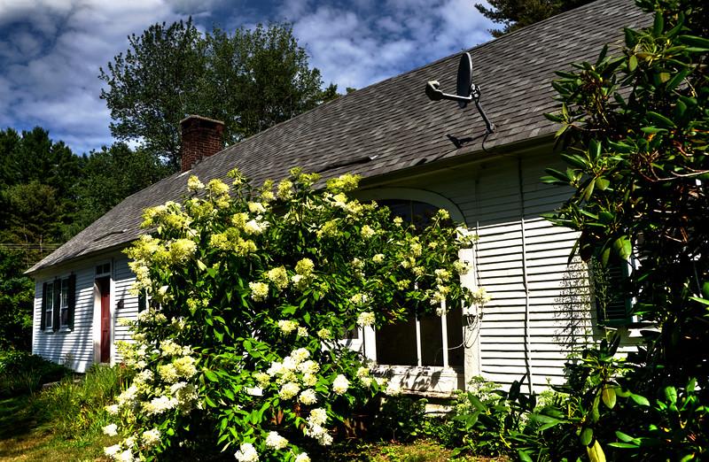 Carol's Hillsboro Center House