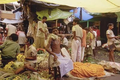 North to South ...Street Scenes... India - ©Rawlandry