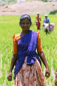 North to South ...Women... India - ©Rawlandry