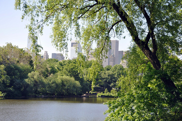 Central Park, view of New York skyline.