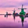 Netherlands 2018.