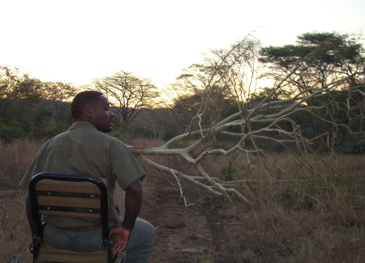 safari tracker