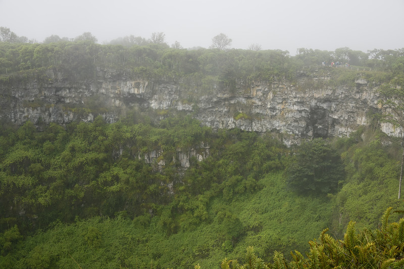 Ancient Volcano, in a Rain Forest